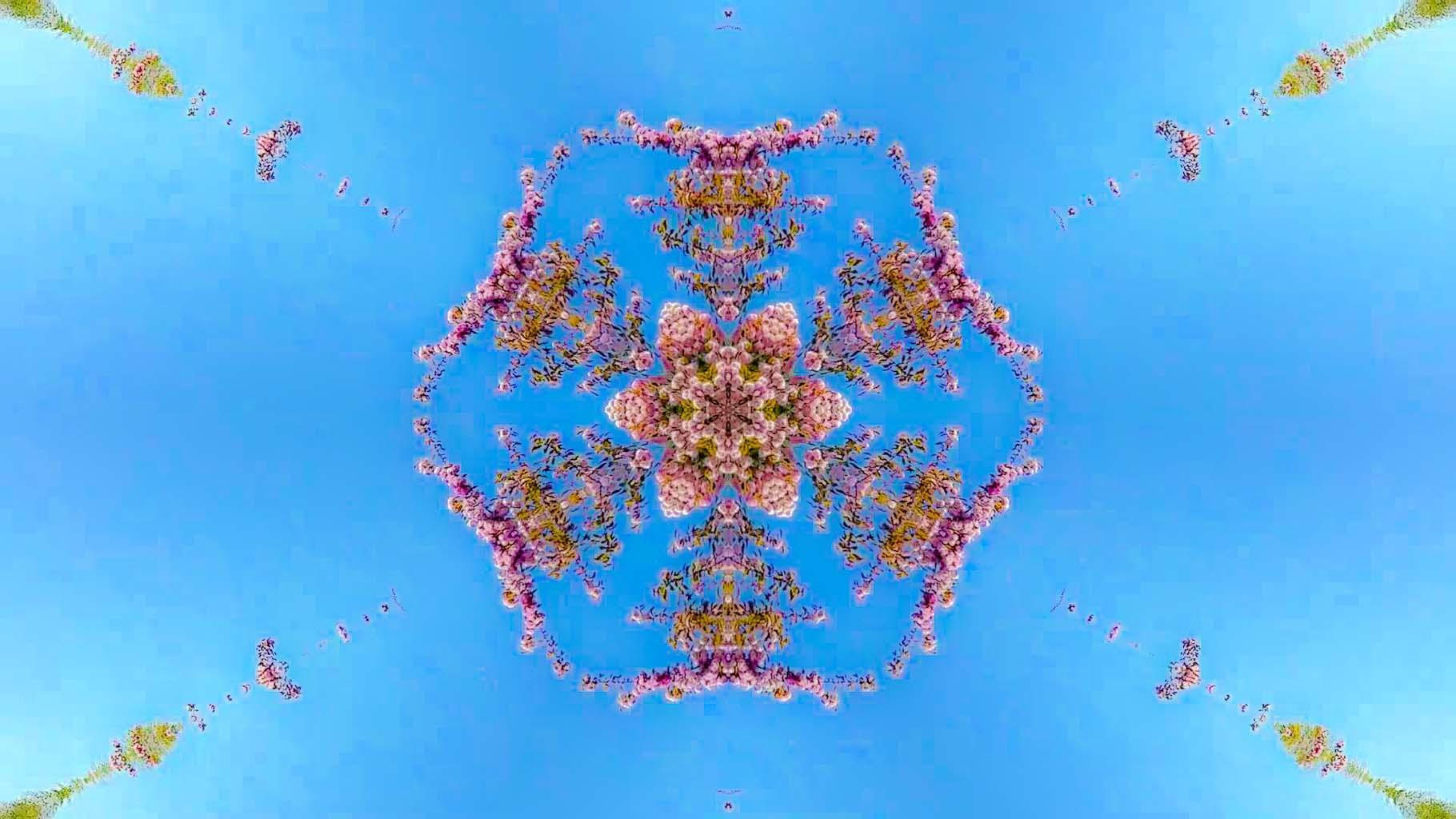Kaleidoscope24_web
