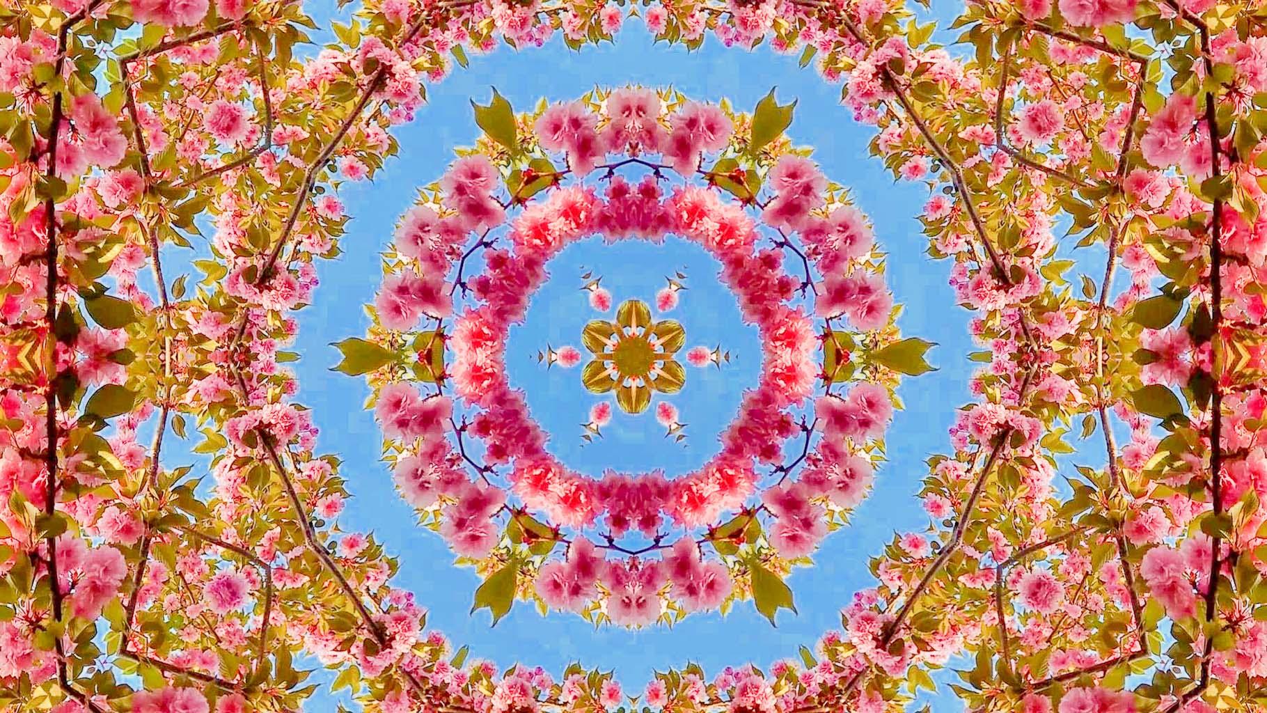 Kaleidoscope09_web