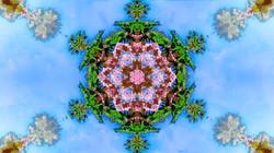 Kaleidoscope76_web