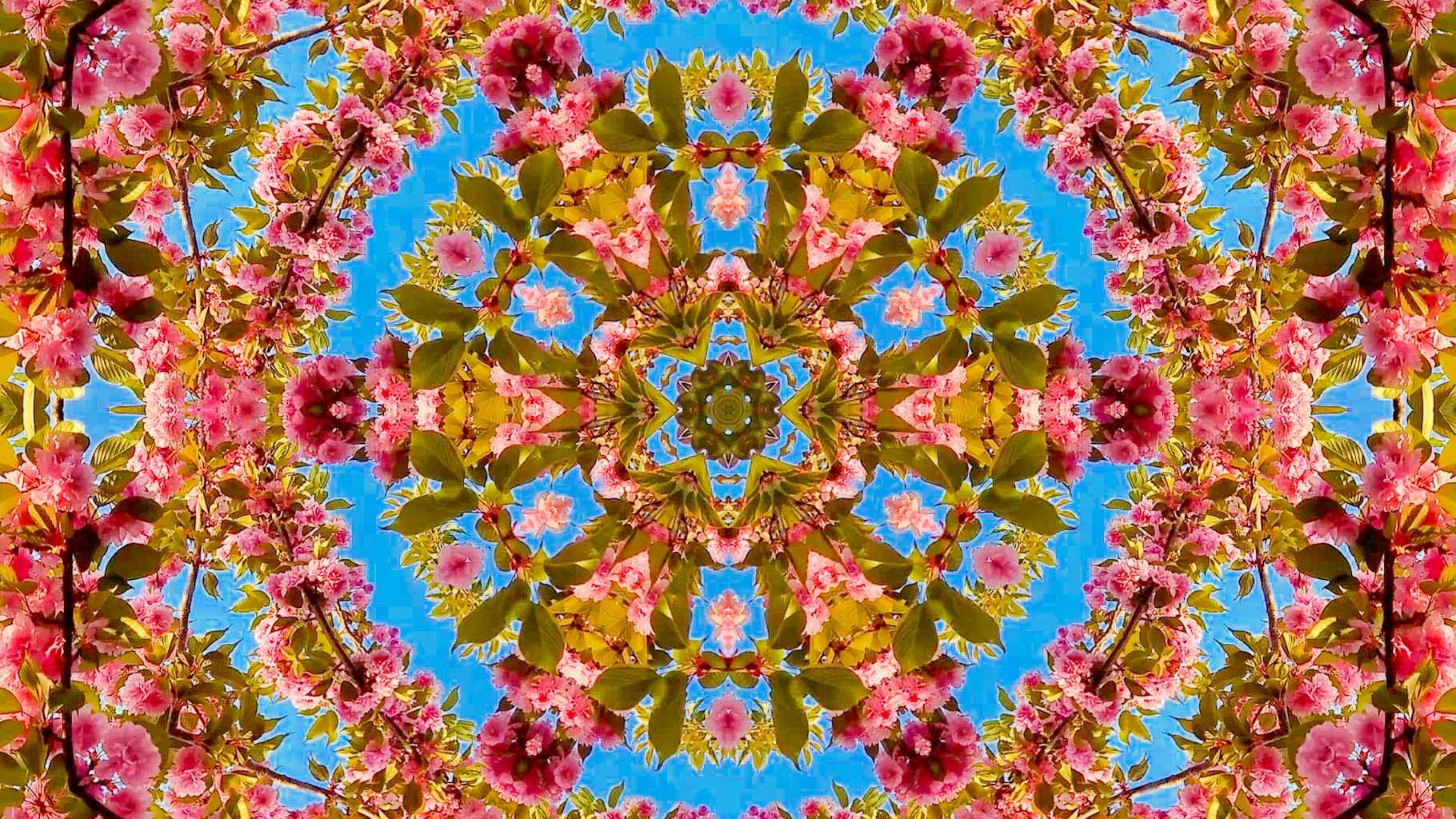 Kaleidoscope08_web