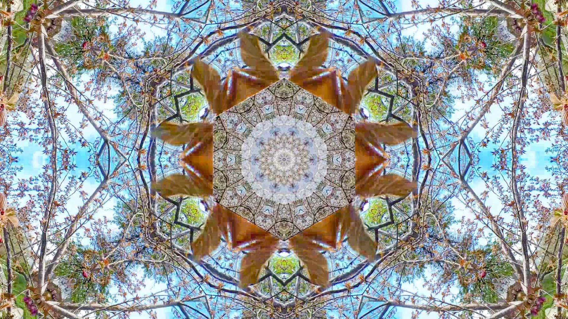 Kaleidoscope21_web