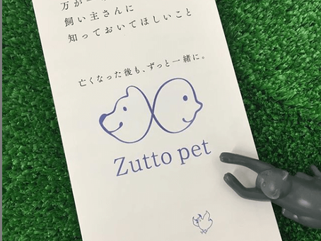 Zuttopet・ご案内資料完成!