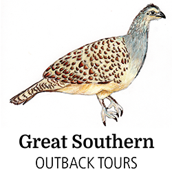 Great Southern Outback Tours.png