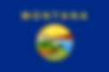 Montana State Flag.png