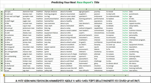 Triathlon Race Reports at Palm Trees Ahead, LLC