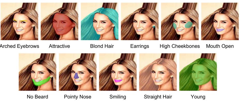 Facial Attribute Parsing