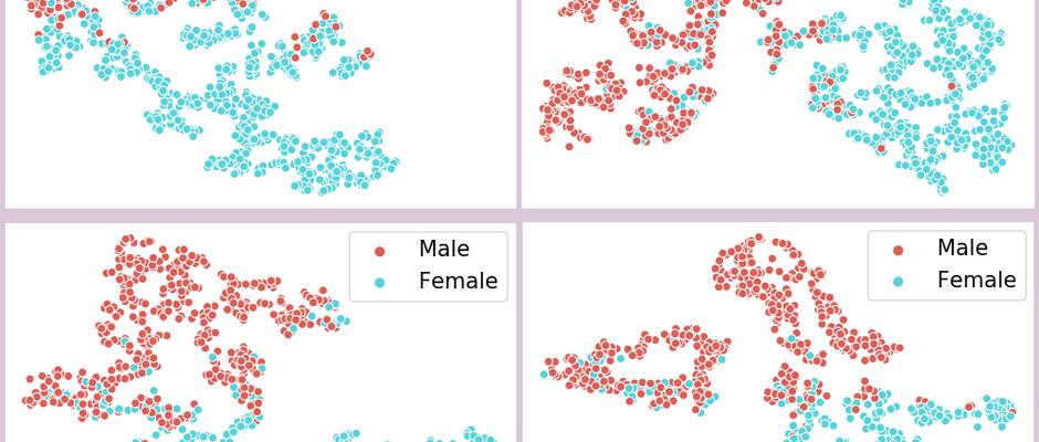 Gender Bias in Political Writing