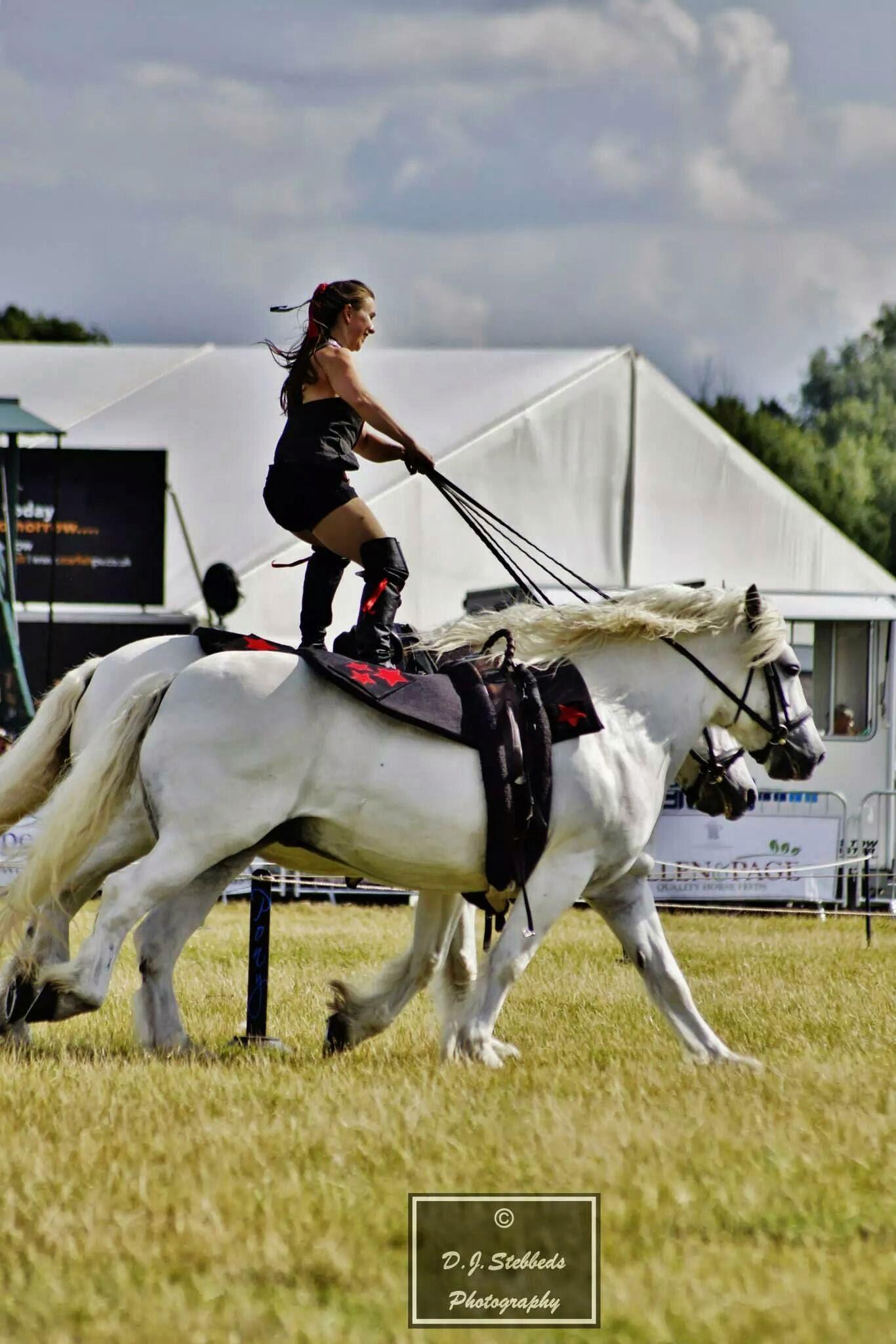 Roman Riding - Dougie & Ronan