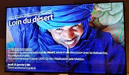 niger sahara sahel jade mietton documentaire projection touareg tchad mauritanie algerie musée confluence lyon