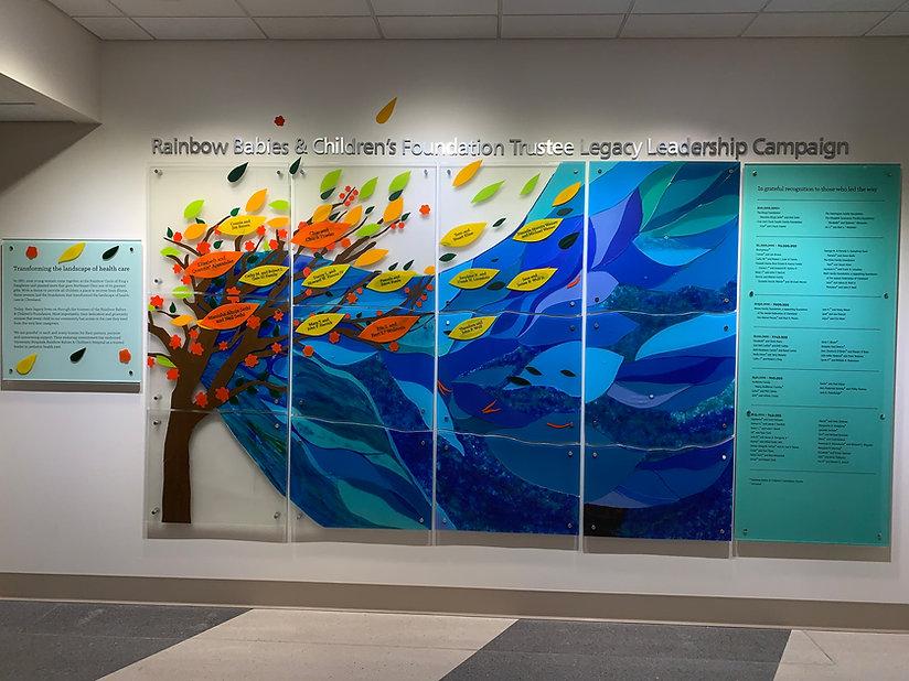 Rainbow Donor Wall