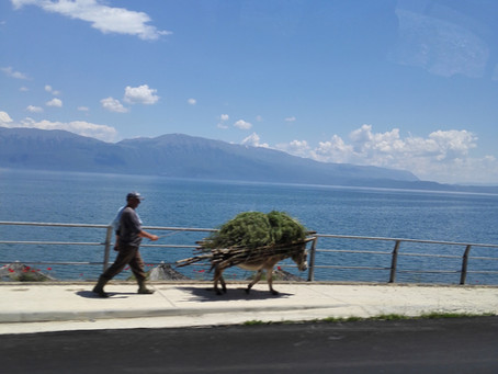 Postcard from Lake Ohrid