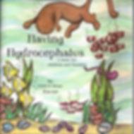Having Hydrocephalus