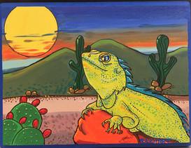 Iguana del desierto