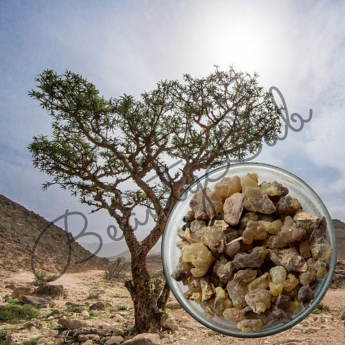Ладан натуральный (смола) (20 гр)