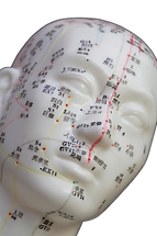 acupunctuurpunten_gezicht_2.png