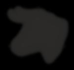 logo schaduw.png