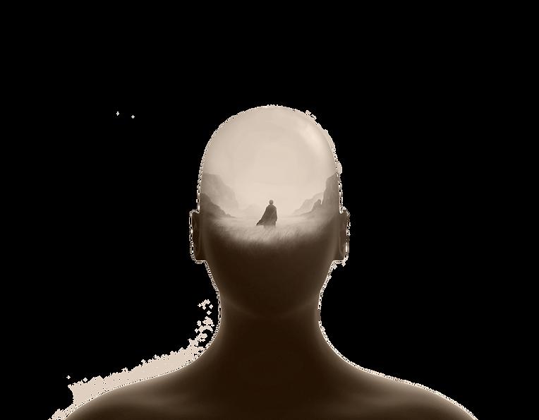 veerkracht head mauw 2.png
