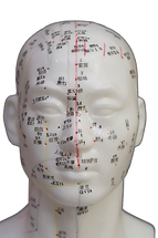 acupunctuurpunten_gezicht_1.png