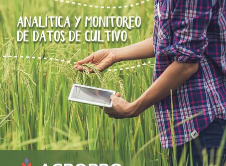 Analítica y Monitoreo de datos de Cultivo
