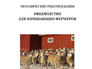 Овцеводство для начинающих фермеров