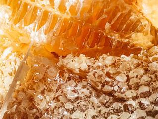 Есть ли перспектива у нашего пчеловода?