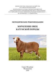 Кормление овец катумской породы