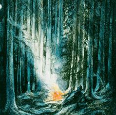 Innpå Finnskogen