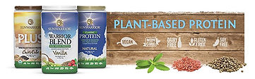 Plant-based Protein, best Protein