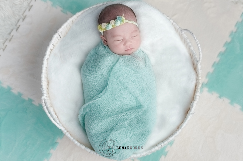 Newborn-Photography-Basket