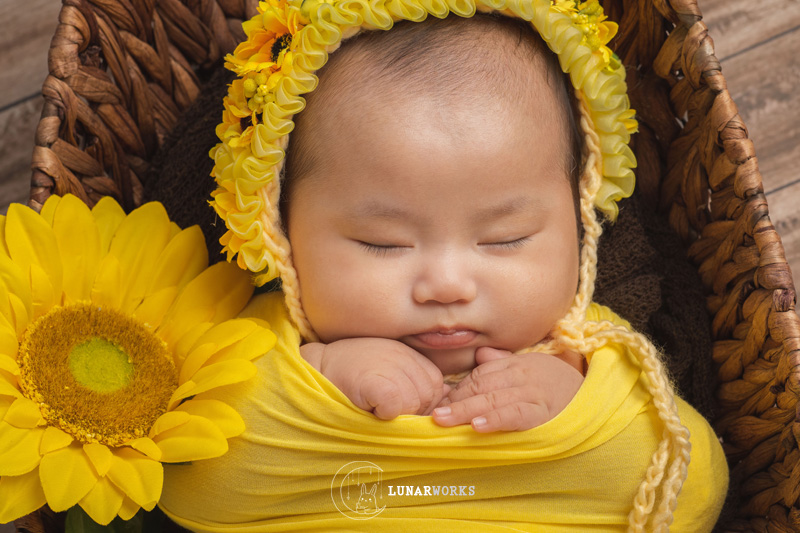 Baby-Photoshoot-SunFlower