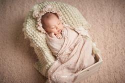 Bear-Crate-Newborn