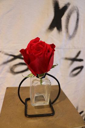 Budvase - Single Rose