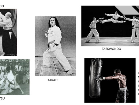 What is the (Absolute) Best Martial Art for You?