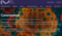 CSP image coronovirus page.jpg
