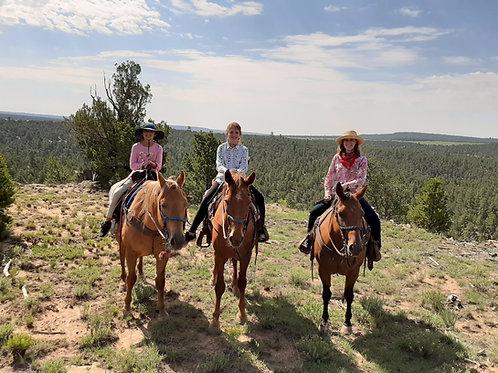 2 Hour Rowe Mesa Ride