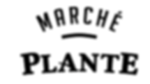 logo blanc pour site.png
