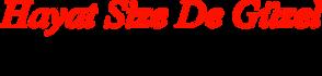 hayatsizedeguzel-logo.png