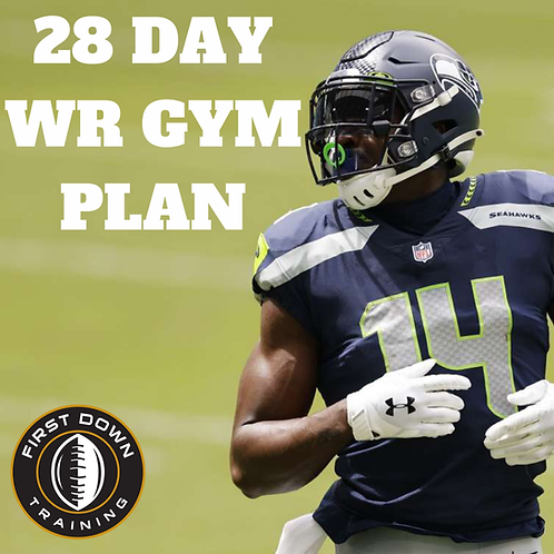 28 Day WR Gym Program