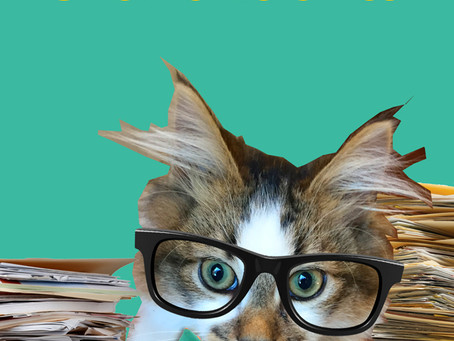Confidential Correspondence found on Lola*Cat's Desk
