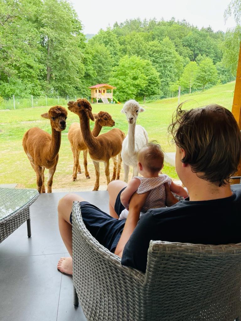 Babytreff auf der Alpakawiese