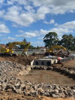 Wetland Construction