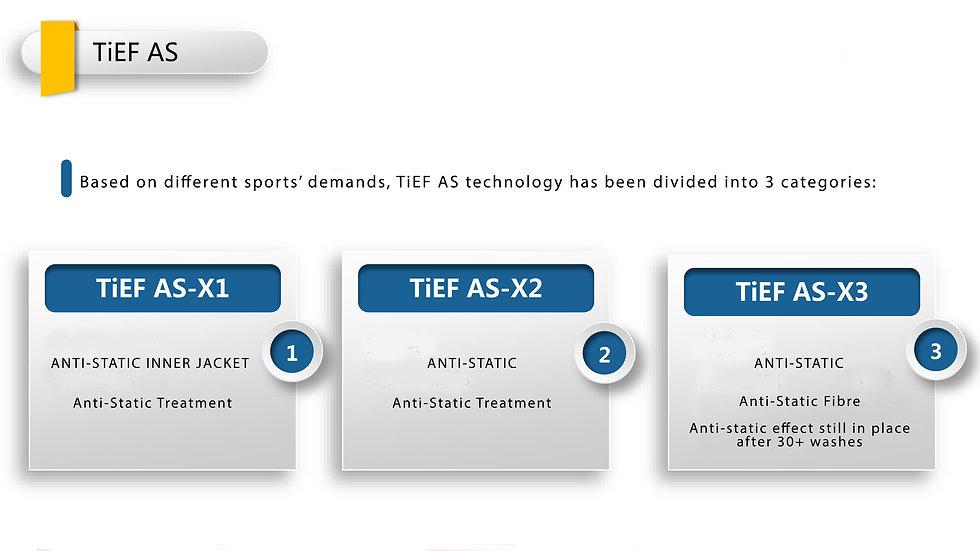 TiEF AS 2.jpg
