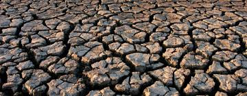Force majeure in instances of drought