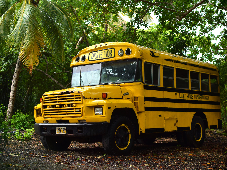 The schoolbus