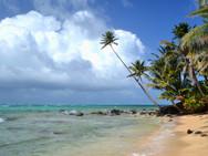 A beach 2