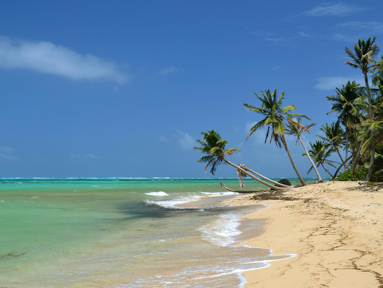 A beach 1