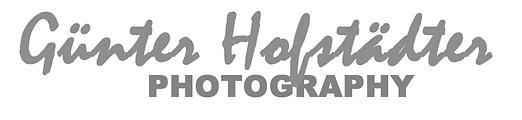Logo Hofstaedter 2020_grau.tif