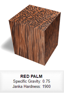 105 RED PALM.png