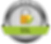 ssl-encryption-icon-4.png