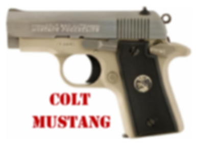 Colt Mustnag Grips